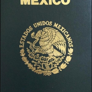 fake Mexican passport